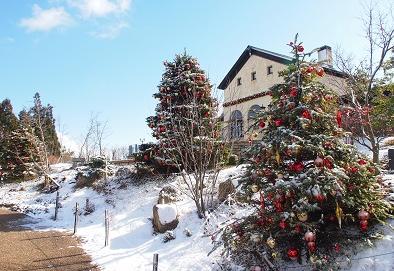 クリスマスデート2018|関西・神戸の車で行くドライブデートスポット3選